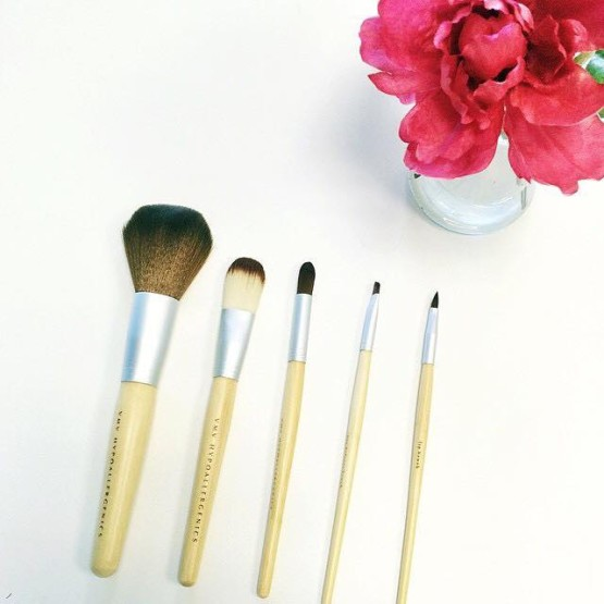 Makeup Brushes - The Stylish Print