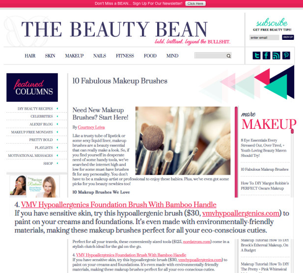 Foundation Brush - The Beauty Bean
