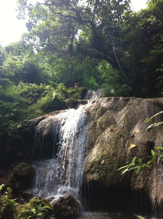 WaterfallsLeyteFarm-20140308