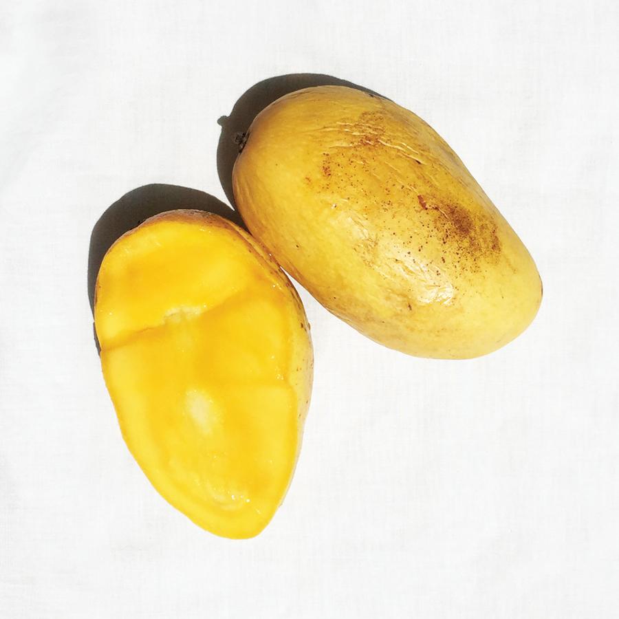 Allergens-Mango-LVB-15Sep2015-IMG_0807-20150915