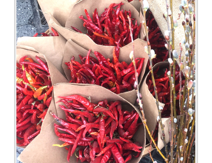 CHILI (CAPSICUM): Allergen or Not An Allergen?