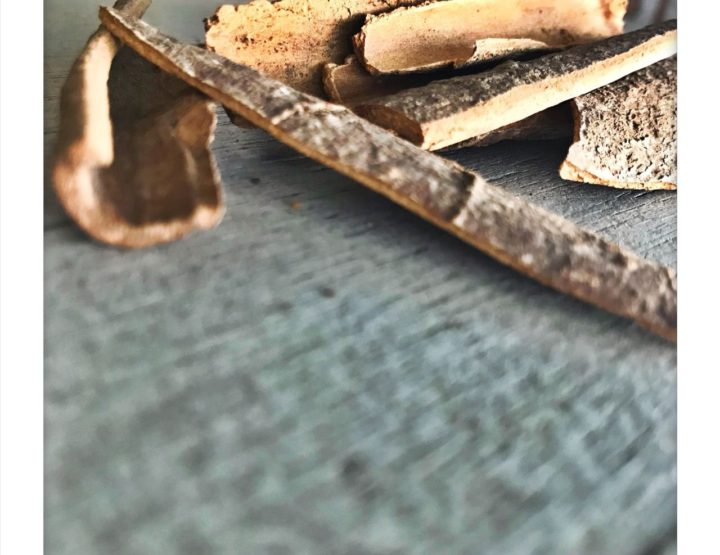 CINNAMON: Allergen or Not An Allergen?