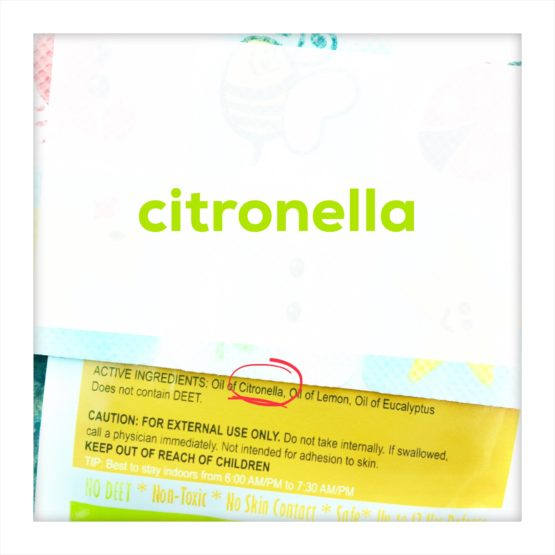 CITRONELLA: Allergen or Not An Allergen?