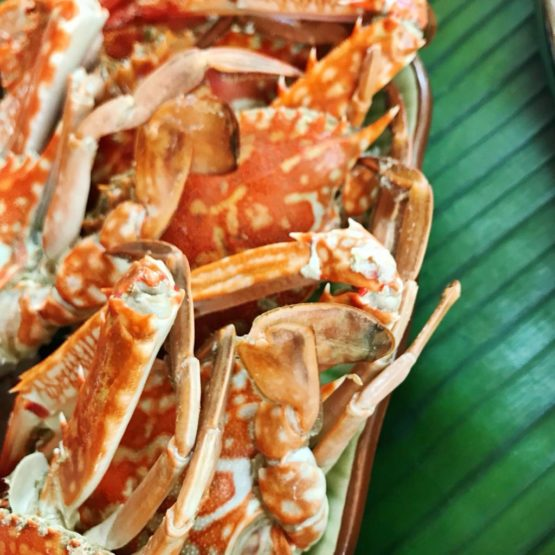 CRAB (the shellfish): Allergen or Not An Allergen?