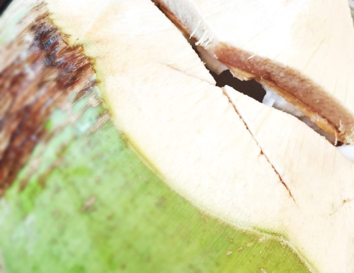 COCONUT WATER: Allergen or Not An Allergen?